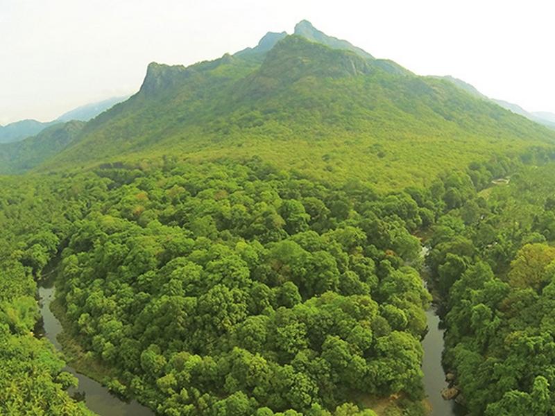 silent-valley-national-park-trekking-kerala