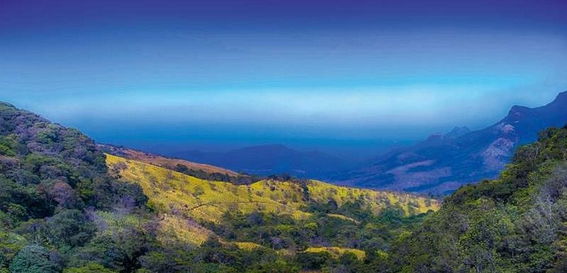 Best Trekking Places in Kerala