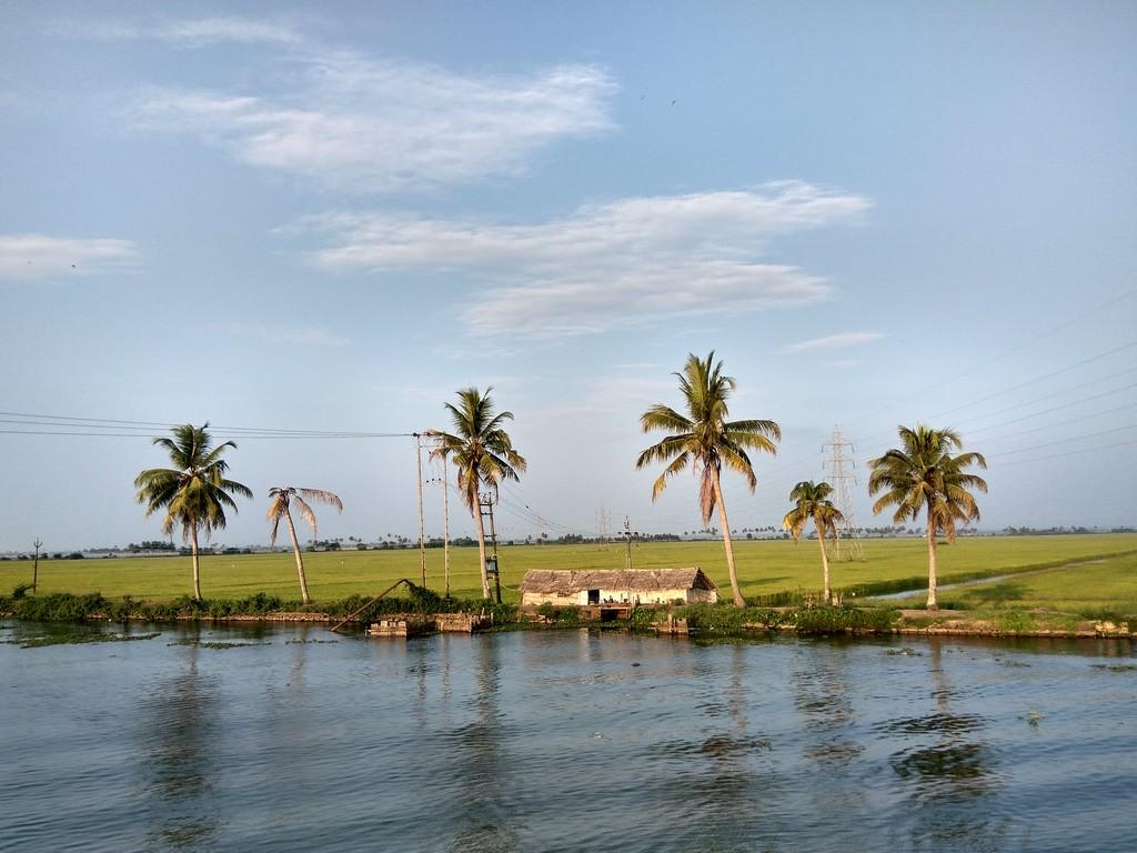 best-backwaters-in-alleppey-14