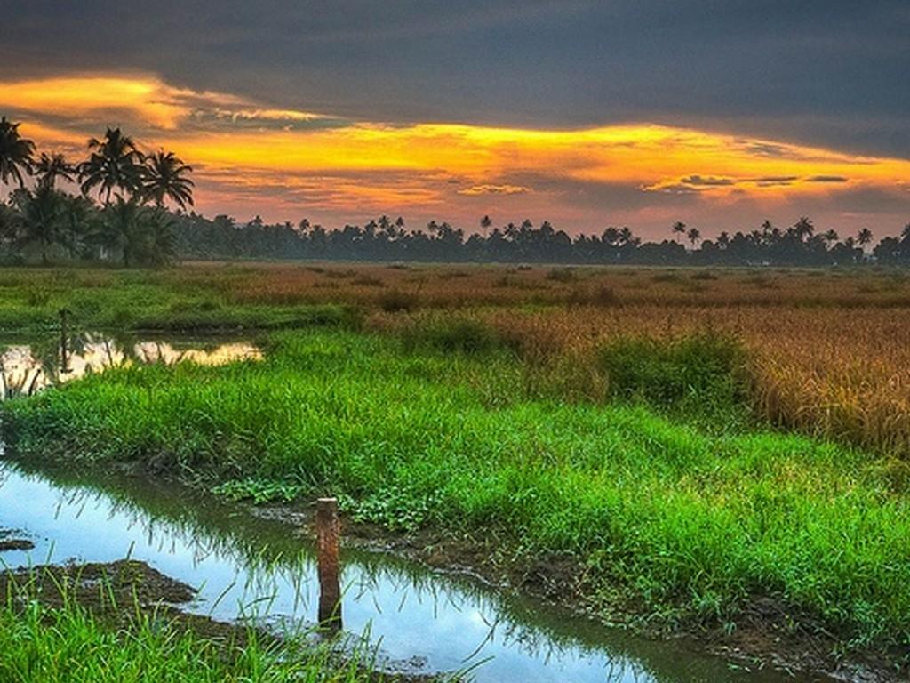 best-backwaters-in-alleppey