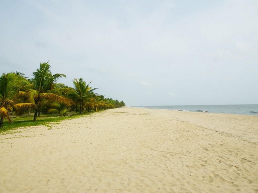 marari-beach-kerala-alleppey