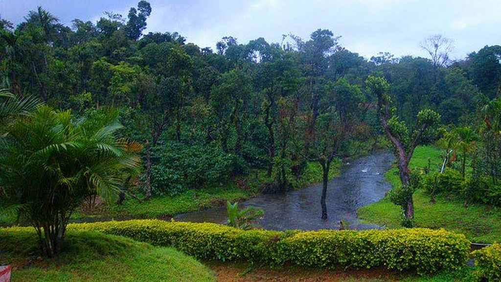 Rains in Coorg